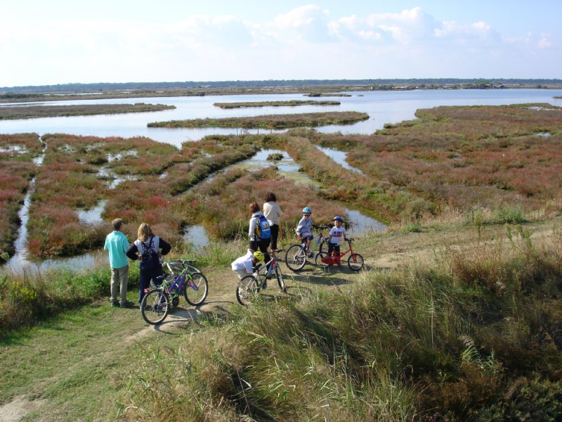 SAPIS and ARIMINUS CYCLE-EXCURSION -